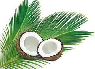 Coco - Détente et apaisement